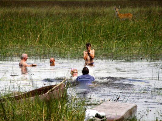 Okavango Horse Safaris; Riding Safaris Africa