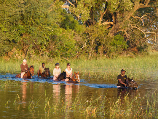 Okavango Horse Safaris; Riding Safaris Africa