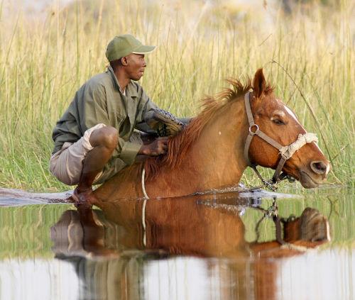 lamu-deep-water-groom